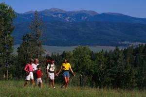 Weges- und Feldränder, Wiesen oder Wälder sind beliebte Orte, an denen sich Zecken gern aufhalten.
