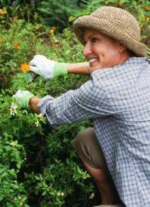 Selbst im eigenen Garten lauern Zecken - Handschuhe und lange Kleidung schützen.