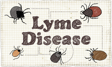 Lyme Disease Illustration